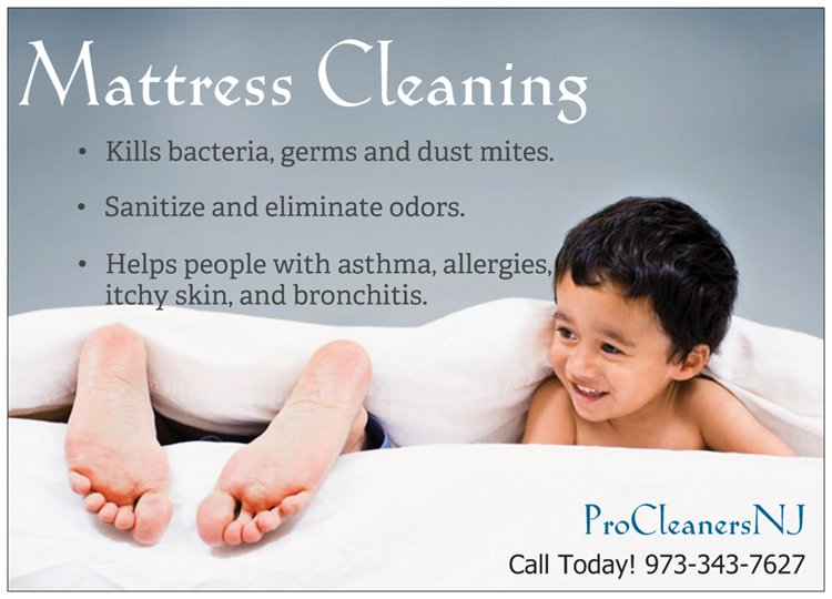Mattress Cleaning New Jersey Bed Clean