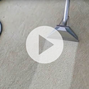 Carpet Cleaning Chester NJ