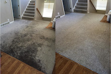 Carpet Cleaning New Jersey Steam Cleaner Clean Carpet
